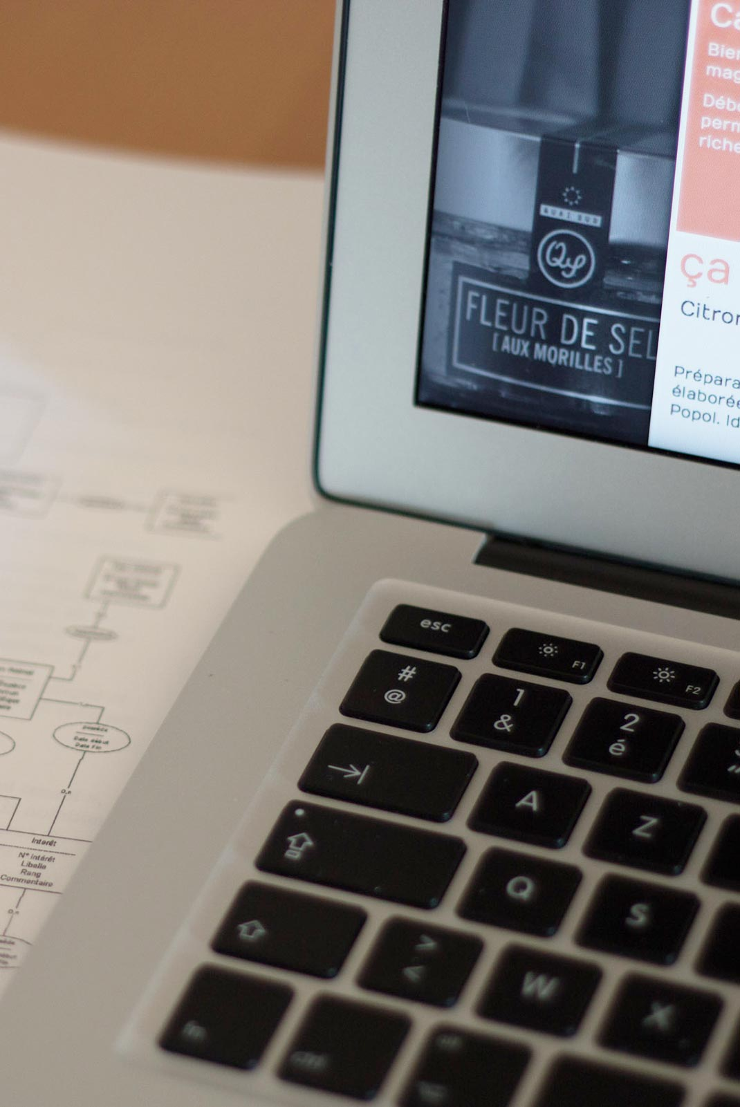 Une agence web sur l'Hérault qui vous apportera des solutions fiables et économiques pour toutes vos demandes